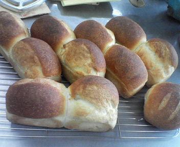 天然酵母パン6